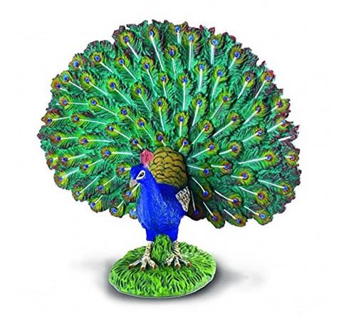 Collecta Farm Life Peacock Authentic Hand Painted Model Animal Figure for Kids age 3Y+
