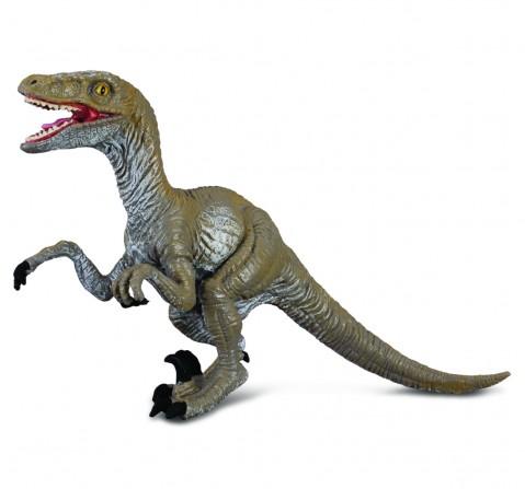 Collecta -Velociraptor figure, 3Y+