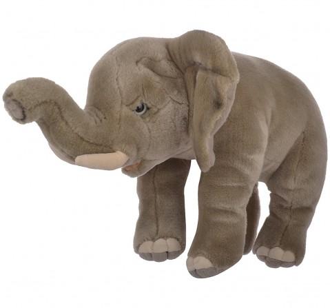 Hamleys Ella The Elephant Soft Toy (Gray) Animals & Birds for Kids age 2Y+ - 26.2 Cm (Grey)