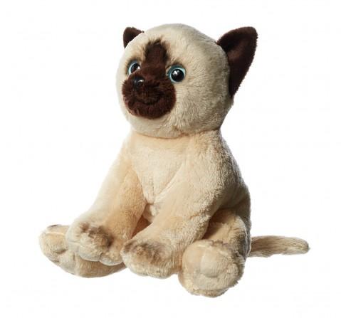 Hamleys Floppy Siamese Cat W. Bean Soft Toy (Beige)  for Kids age 2Y+ - 7 Cm