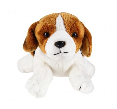 Hamleys Beagle Dog Soft Toy (Multicolour) Animals & Birds for Kids age 3Y+ - 10 Cm
