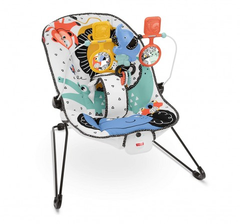 Fisher-Price Deluxe Bouncer Baby Gear for Kids age 0M+