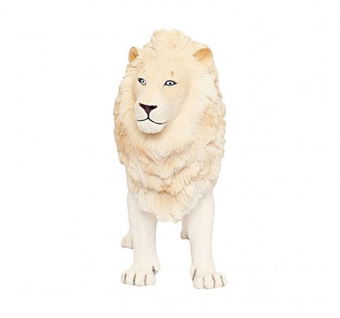 Collecta White Lion Animal Figure for Kids age 3Y+ (White)