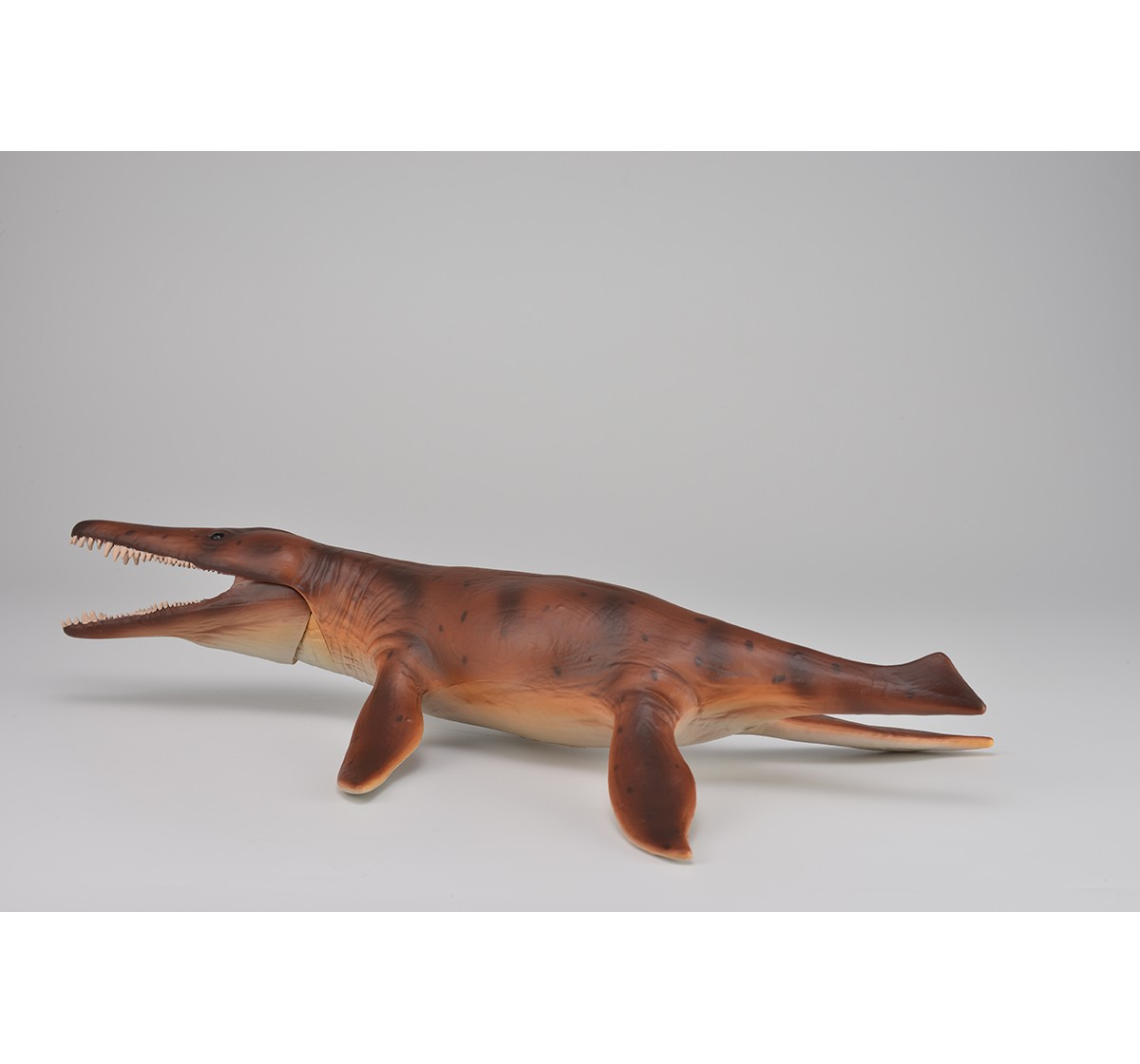Collecta Kronosaurus with Movable Jaw Deluxe 1:40 Scale Animal Figure for Kids age 3Y+