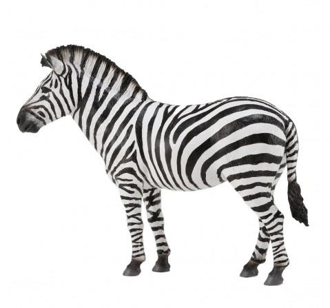 Collecta -Common Zebra animal figure, 3Y+