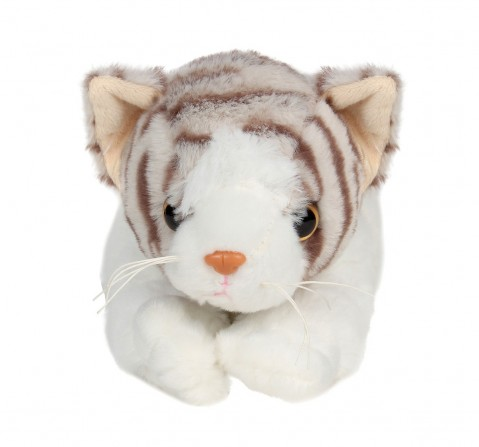 Cuddles Sleeping Cat 28 Cms Plush Toy for New Born Kids age 0M+ (Grey)
