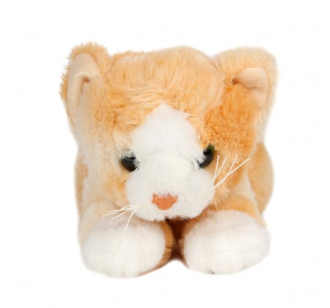 Cuddles Sleeping Cat 28 Cms Plush Toy for New Born Kids age 0M+ (Brown)