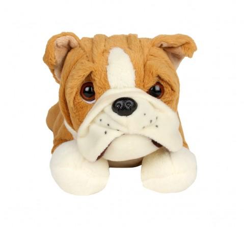 Cuddles Sleeping Bulldog 40 Cms Plush Toy for New Born Kids age 0M+