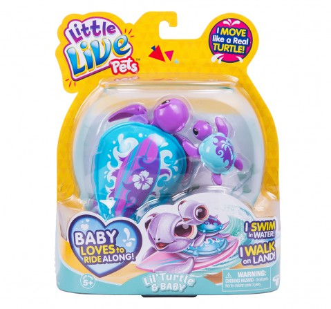 Little Live Pets Turtle Single Pack Animal Figures for Girls age 5Y+