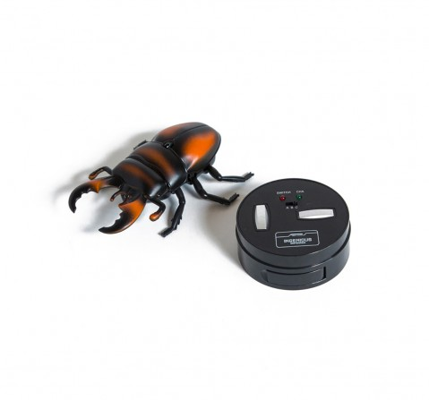 Hamleys Infrared Remote Control Beetle Remote Control Toys for Kids age 5Y+ (Brown)