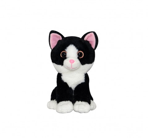 Softbuddies Big Eye Cat  Quirky Soft Toys for Kids age 3Y+ - 20 Cm