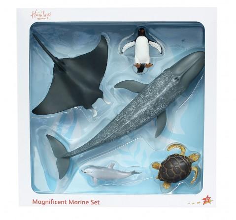 Hamleys  Sea Life Box Set, 5Pcs, 3Y+