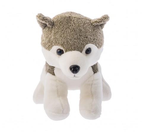 Dimpy Toys Jasco Husky Dog, 30 Cm  Animals & Birds for Kids age 3Y+ - 30 Cm (Grey)
