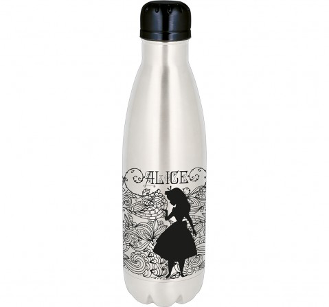 Disney Story Young Adult Stainless Steel Bottle ,Bags for Kids age 7Y+ 780 ml