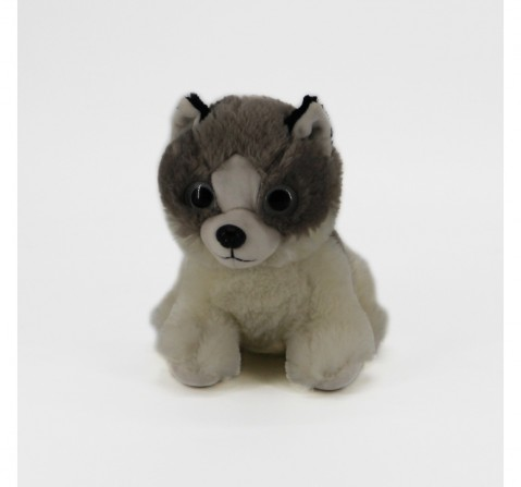 Dimpy Toys Assorted Dog Husky, Unisex, 3Y+(Multicolour)
